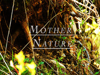 KickStart Me Daily: Mother Nature